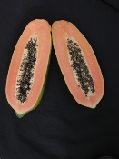 Tainung #2 Papaya - 10 Seeds